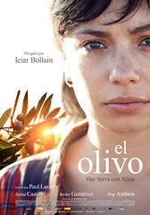 EL OLIVO-DP